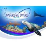 Дайвинг Центр Ambergris Divers (Сан-Педро)