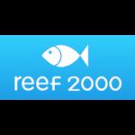 Дайвинг центр Reef 2000 (Дахаб)
