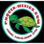 Дайвинг Центр Phocea Mexico (Консумел)