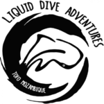 Дайвинг Центр Liquid Dive Adventures (Тофу)