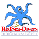 Дайвинг центр RedSea-Divers Annette and Robby (Хургада)