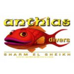 Дайвинг центр Anthias Divers (Шарм-Эль-Шейх)