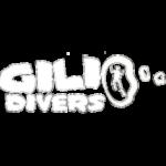 Дайвинг Центр Gili Divers (Ломбок)