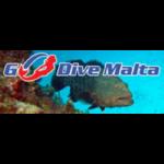 Дайвинг центр Go Dive Malta (Меллиеха, Ксемксижа)