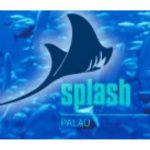 Дайвинг Центр Splash Palau (Корор)