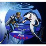 Дайвинг Центр Philippine Fun Divers, Inc. (Остров Бохол)