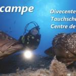 Дайвинг центр Hippocampe Diving Center (Порто-Веккьо, Корсика)